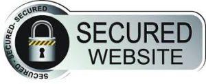 Secured Website Logo